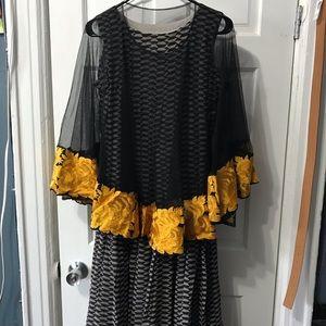 Dresses & Skirts - Beautiful cape dress Indian dress